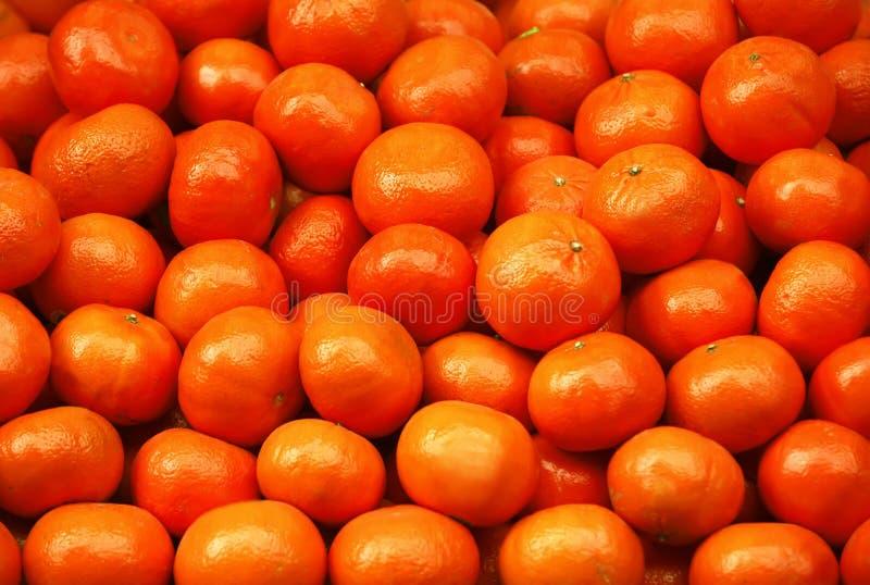 Segment de mémoire de mandarine photographie stock libre de droits