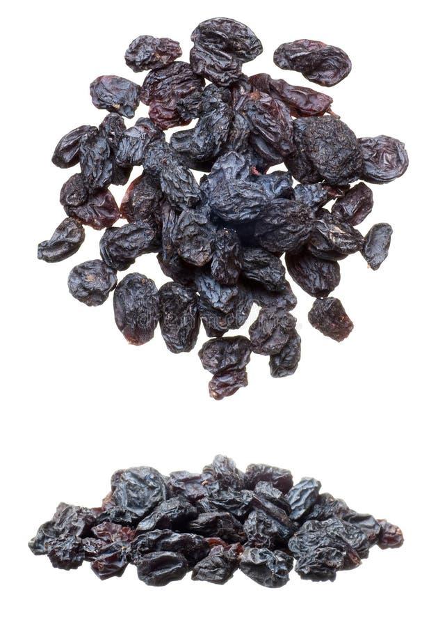 Segment de mémoire de raisins secs images libres de droits