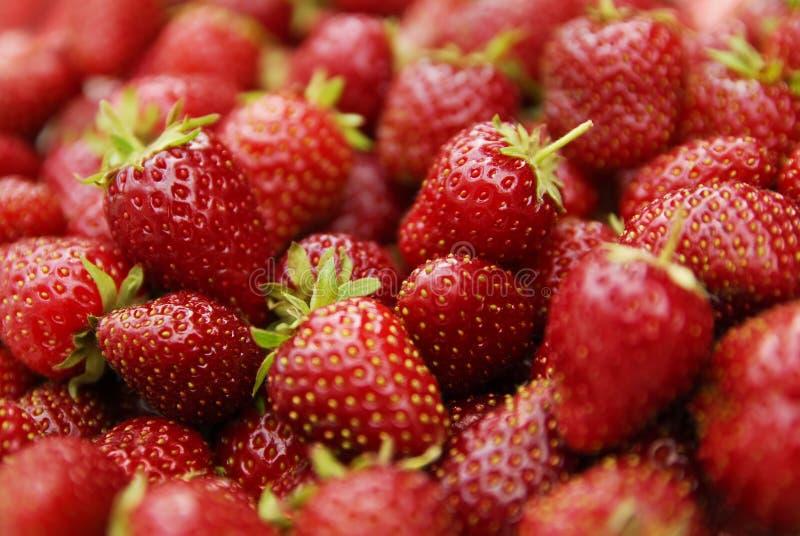 Segment de mémoire des fraises image libre de droits