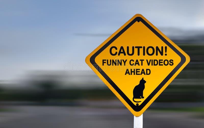 Segnale di pericolo per i video divertenti del gatto - segnale stradale divertente fotografia stock