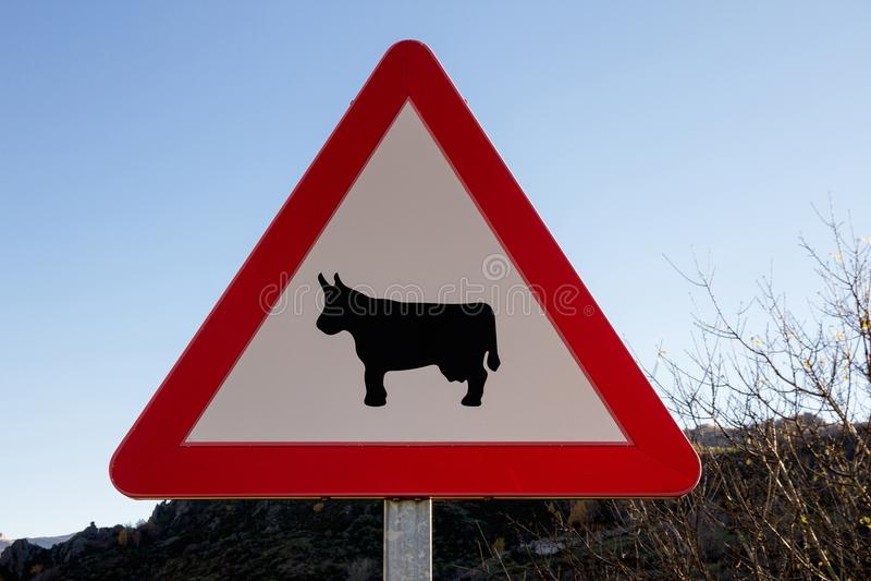 Segnale di rischio degli animali domestici immagine stock
