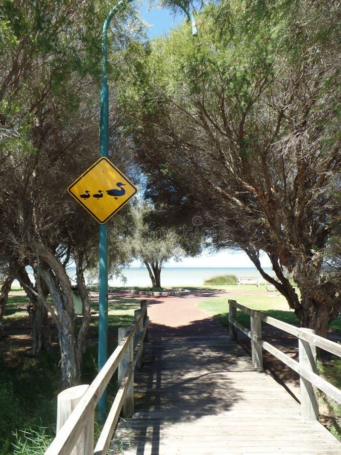 Segnale stradale australiano della provincia della natura fotografia stock