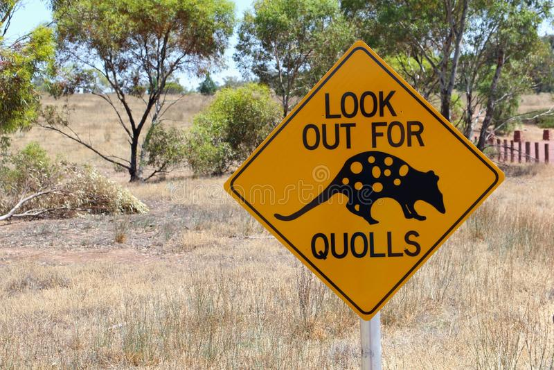 Segnale stradale d'avvertimento di Quolls, Australia Meridionale immagini stock
