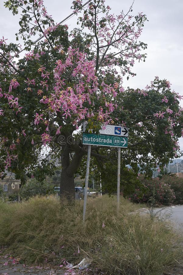 Segnale stradale nelle estremità Imerese fotografia stock