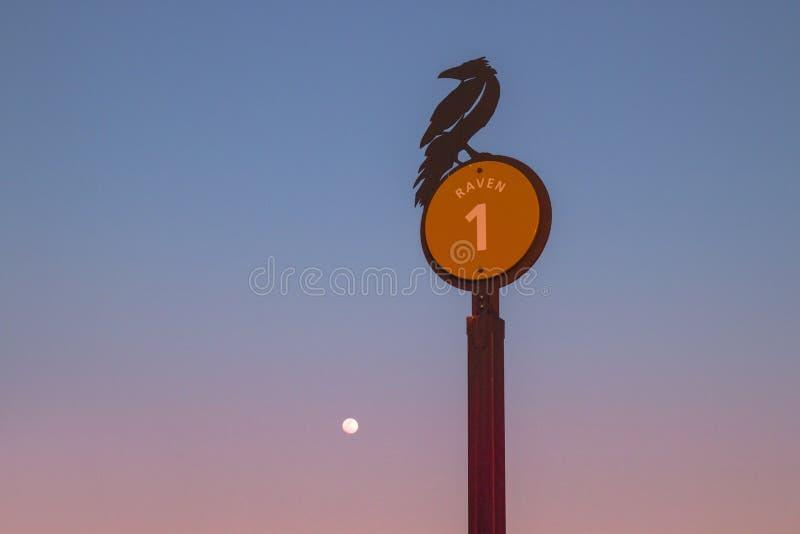 Segnale stradale simbolico della siluetta isolata del corvo sulla sera crepuscolare con il cielo della luna piena a Grand Canyon  fotografie stock