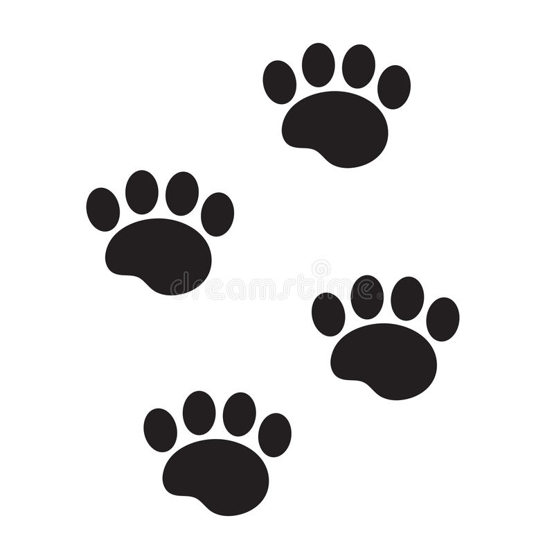 Segni di un'icona animale, piani, stile del piede del fumetto Tracce di zampa del cane isolate su fondo bianco Illustrazione di v illustrazione vettoriale