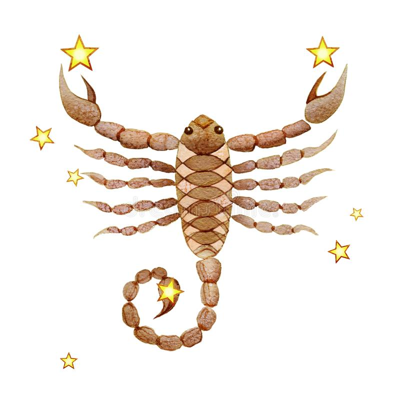Segno astrologico dello scorpione dello zodiaco, acquerello nel retro stile, isolato su fondo bianco royalty illustrazione gratis