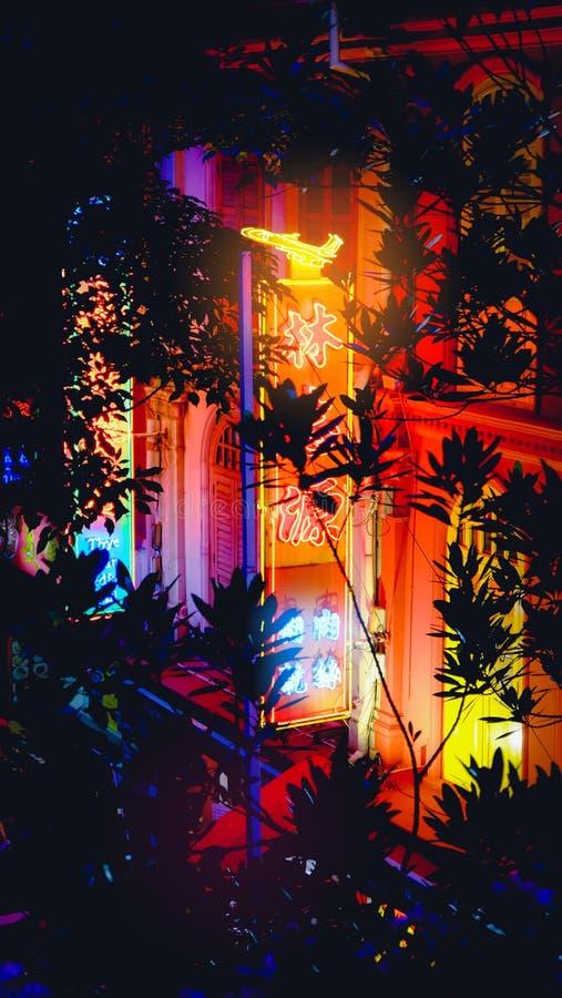 Segno del negozio di Chinatown con la vista delle luci al neon dall'albero con le siluette floreali Singapore fotografie stock