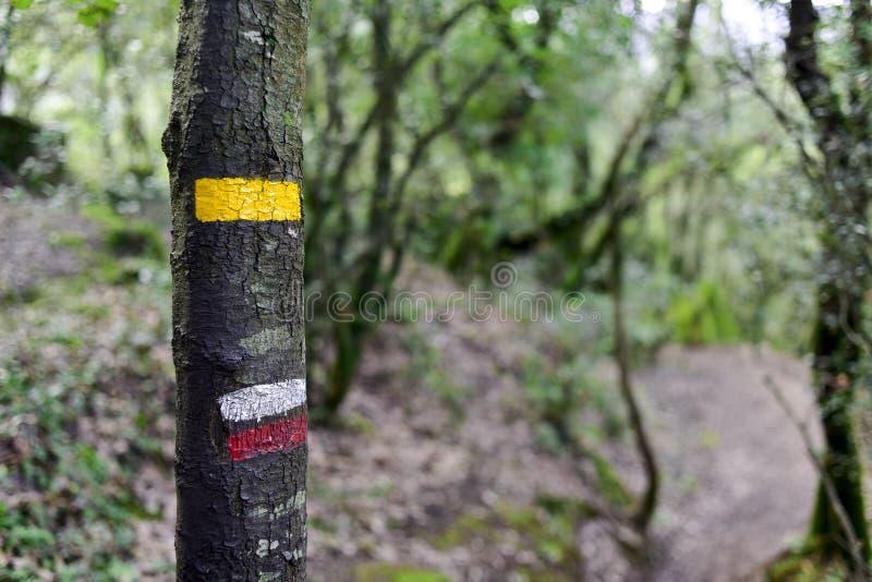 Segno del percorso del GR in un albero in Spagna fotografia stock libera da diritti