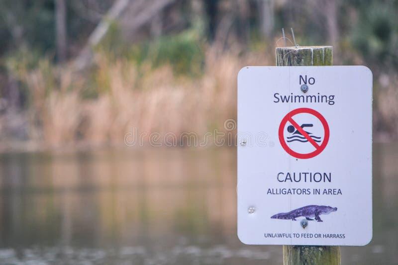 Segno del pericolo degli alligatori a Kathryn Abbey Hanna Park, la contea di Duval, Jacksonville, Florida fotografia stock