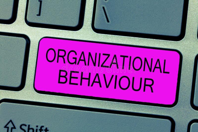 Segno del testo che mostra comportamento organizzativo La foto concettuale lo studio della gente di modo interagisce all'interno  fotografia stock
