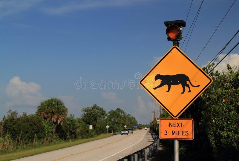 Segno dell'incrocio della pantera di Florida immagini stock libere da diritti