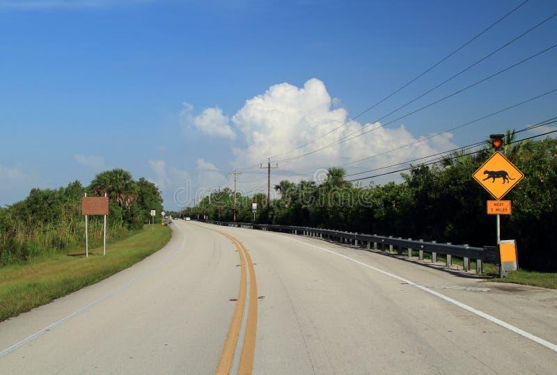 Segno dell'incrocio della pantera di Florida immagine stock libera da diritti