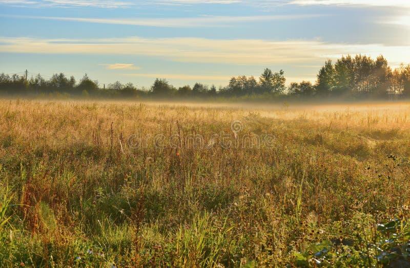 Segno della mussola di autunno immagini stock libere da diritti