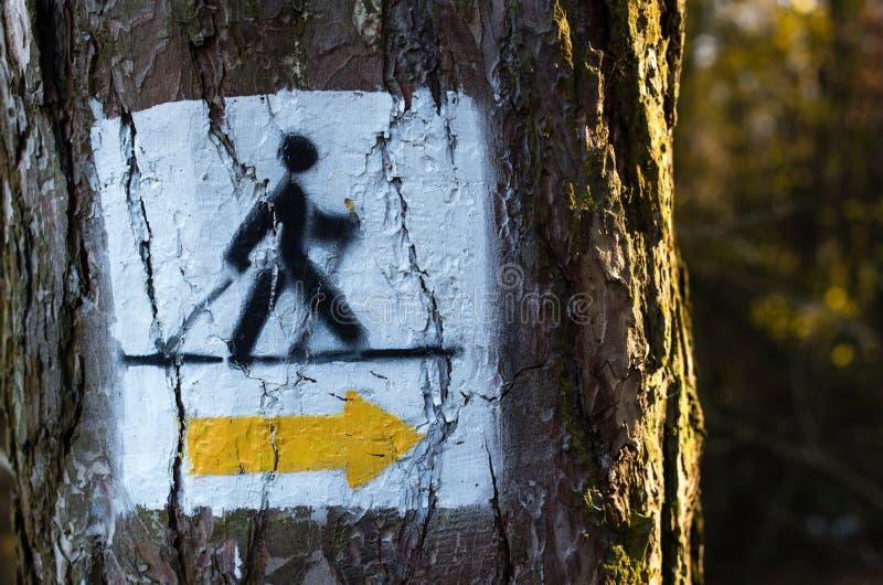 Segno di camminata nordico della pista dipinto sull'albero nella foresta fotografia stock