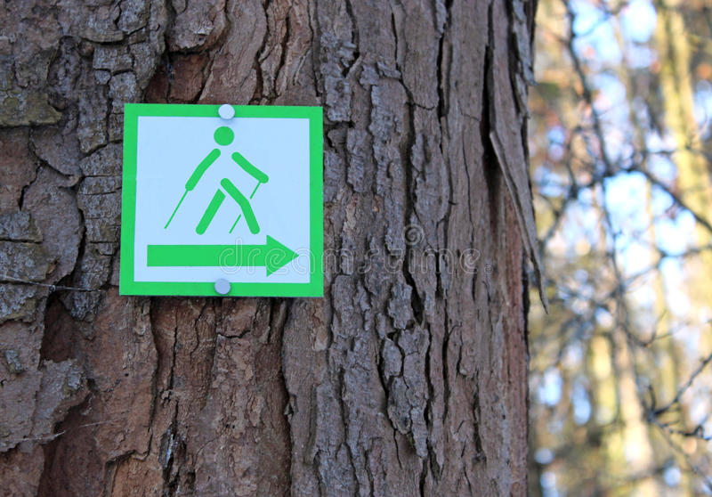 Segno di camminata nordico su un albero immagine stock