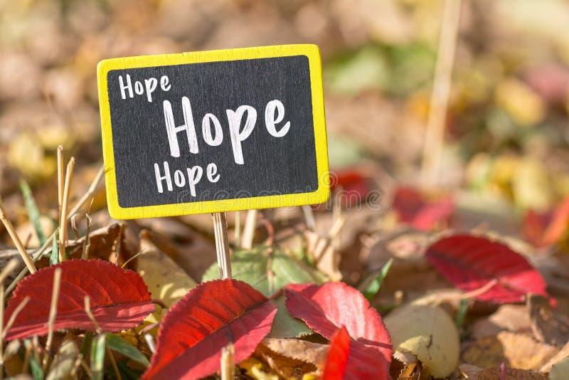 Segno di speranza immagine stock