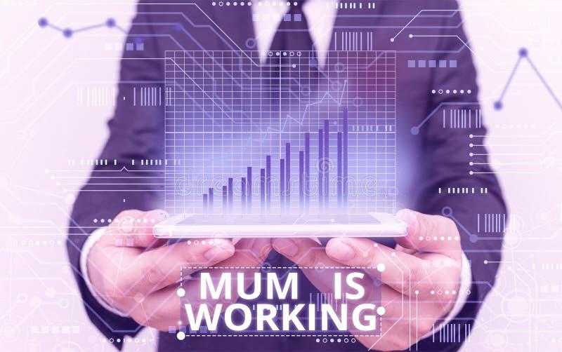 Segno di testo che mostra la mamma in funzione Foto concettuale Empowerment finanziario e madre professionista progressista immagine stock libera da diritti