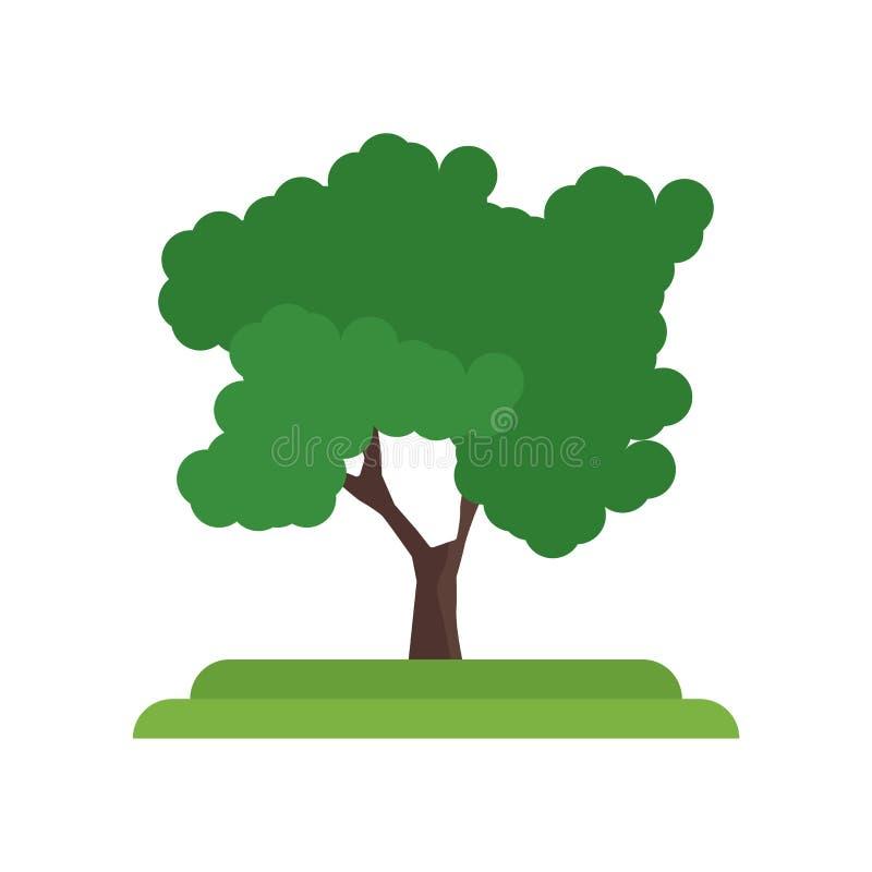 Segno e simbolo di vettore dell'icona dell'albero di locusta nera isolati su bianco illustrazione vettoriale