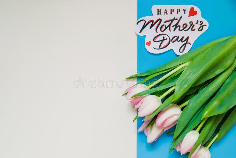 Segno felice del testo di festa della mamma su fondo variopinto i tulipani rosa isplated Concetto della cartolina d'auguri immagi fotografia stock libera da diritti