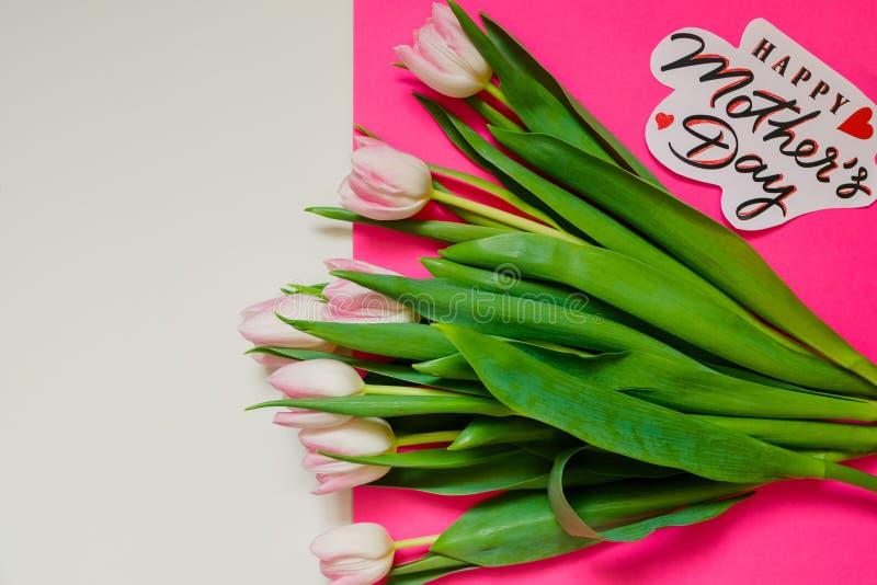 Segno felice del testo di festa della mamma su fondo variopinto i tulipani rosa isplated Concetto della cartolina d'auguri immagi immagini stock