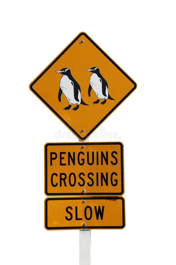 Segno isolato dell'incrocio del pinguino immagine stock libera da diritti