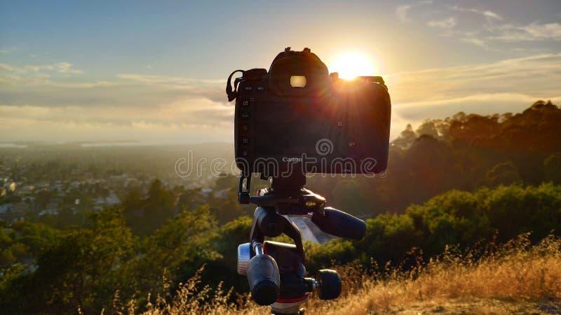 Segno IV di Canon 5D su un treppiede di Manfrotto al picco dell'orso grigio in Berkel immagine stock libera da diritti