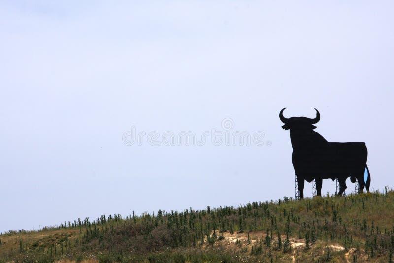 Segno spagnolo del toro fotografia stock libera da diritti