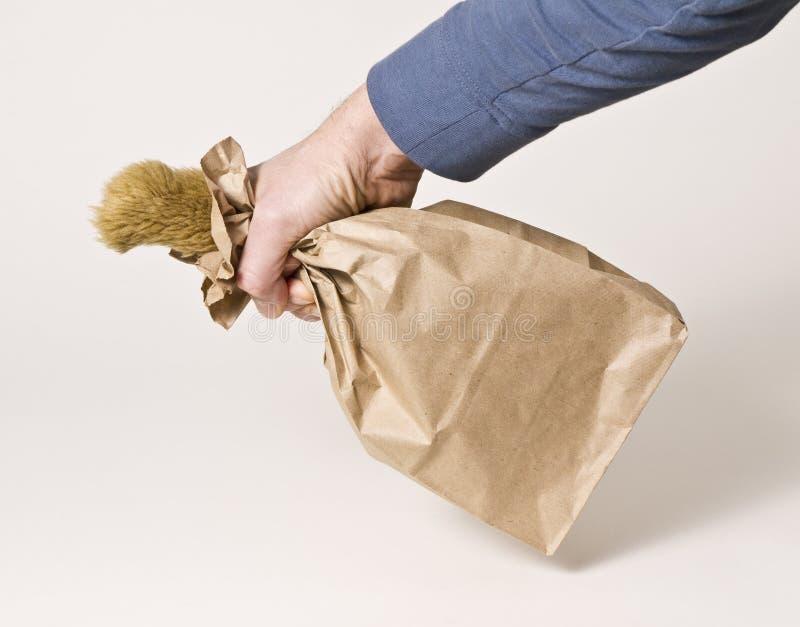 Segredos - não deixe o gato fora do saco imagens de stock