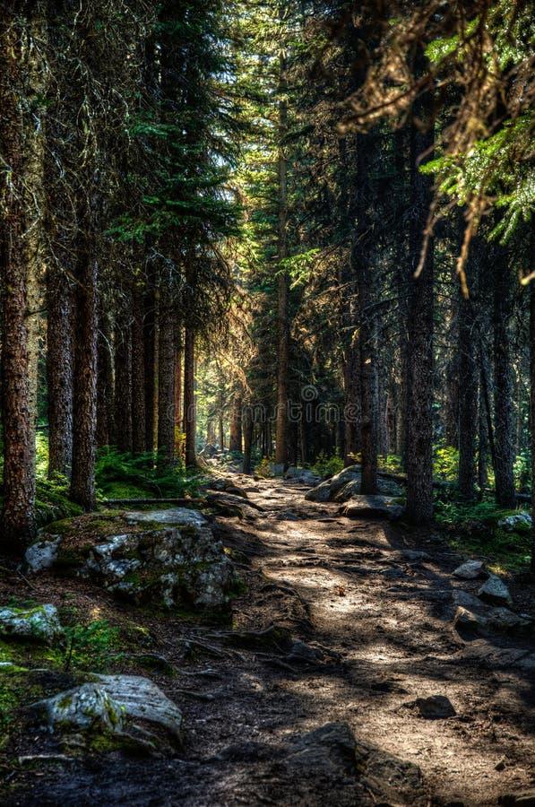 Segua il percorso fotografia stock libera da diritti