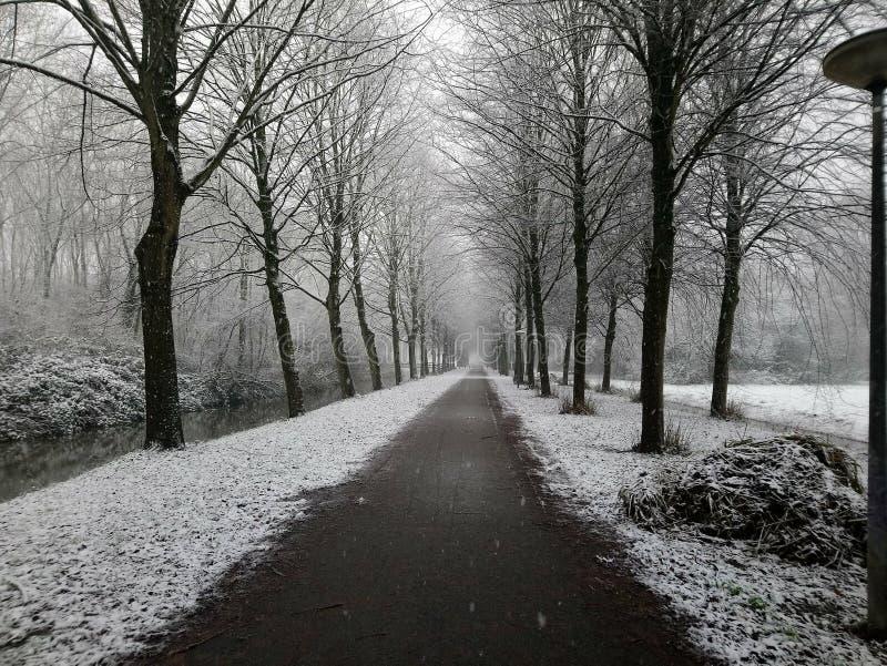 A seguito dell'inverno fotografia stock
