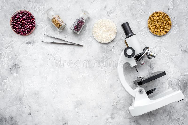 Segurança alimentar Trigo, arroz e feijões vermelhos perto do microscópio no espaço cinzento da cópia da opinião superior do fund fotografia de stock