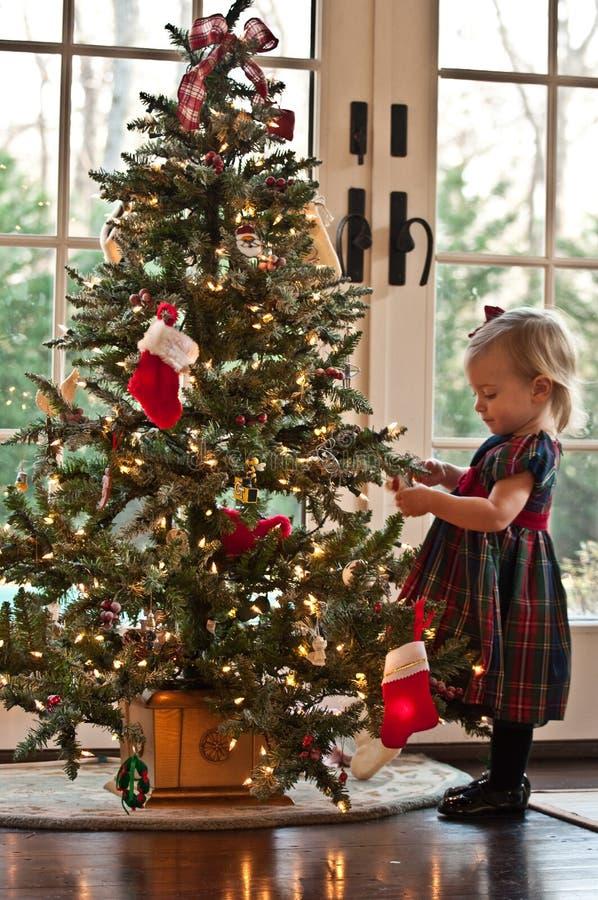Segurando a árvore de Natal fotografia de stock