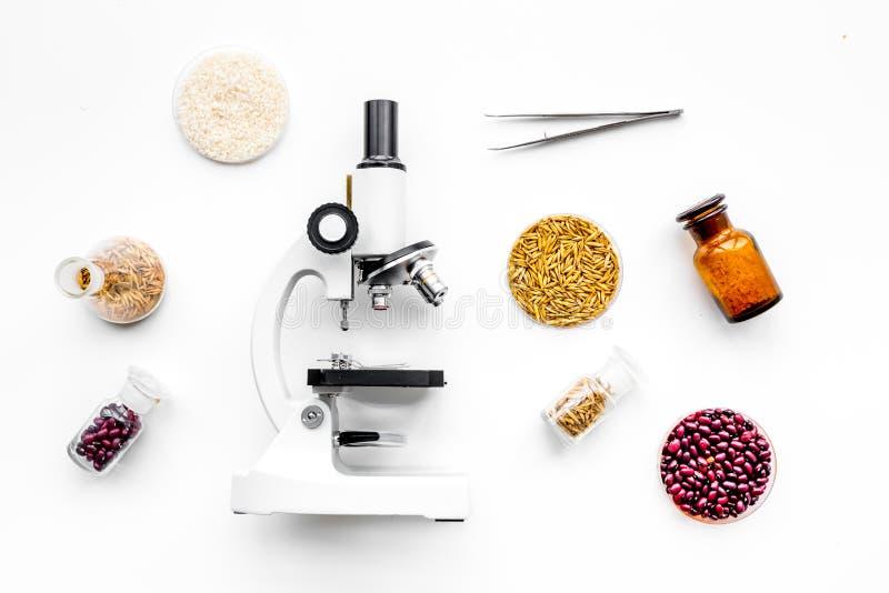 Seguridad alimentaria Trigo, arroz y habas rojas cerca del microscopio en la opinión superior del fondo blanco fotografía de archivo