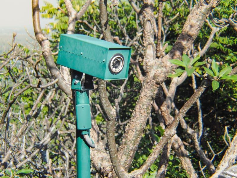 Seguridad de la cámara CCTV ocultada en los arbustos imágenes de archivo libres de regalías