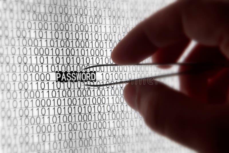 Seguridad de la palabra de paso del ordenador fotografía de archivo libre de regalías
