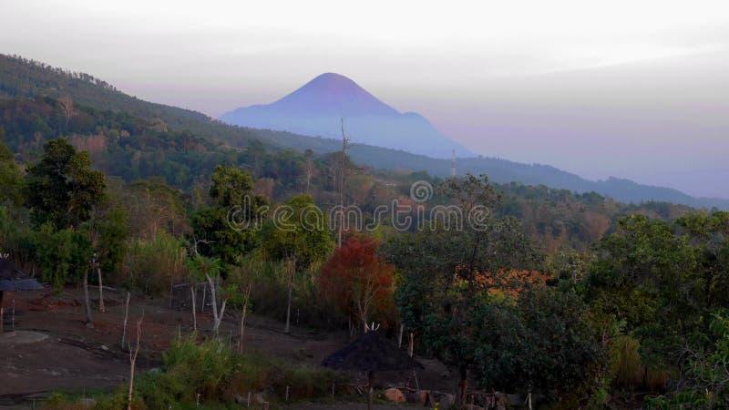Sehen des Berges stockfotos