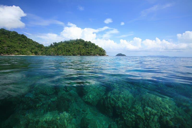 Sehen Sie durch korallenrote Anordnungen über transparentes Meer lizenzfreie stockfotos