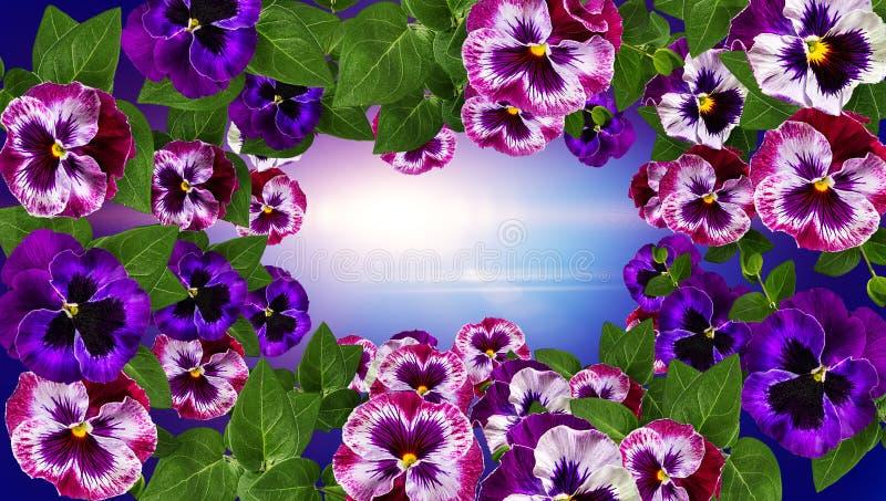 Sehen Sie meine anderen Arbeiten im Portefeuille Feld machte Blumen, den Hintergrund gr?nen Bl?tter Valentinsgru?es mit Blumen lizenzfreie stockfotografie