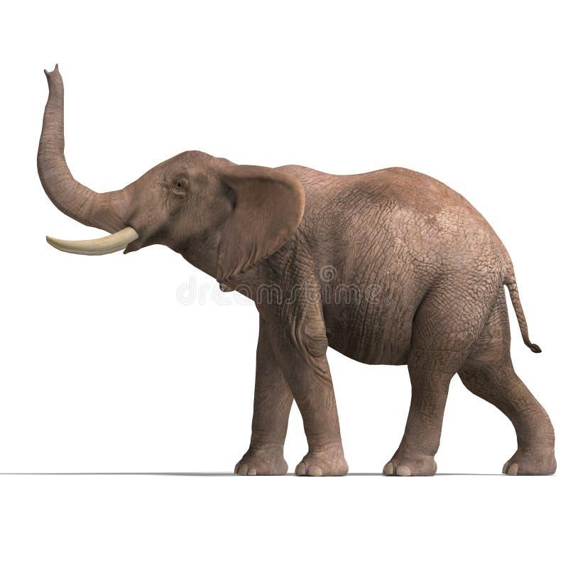 Sehr großer Elefant vektor abbildung