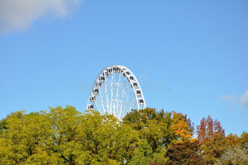 Sehr großes Riesenrad, das über Bäume hochragt. lizenzfreie stockbilder
