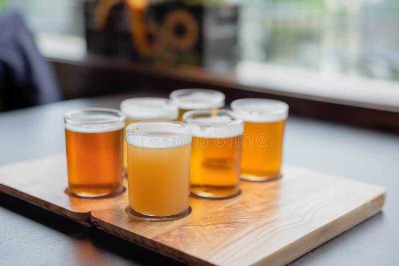 Sei birre differenti allineate per un assaggio fotografia stock