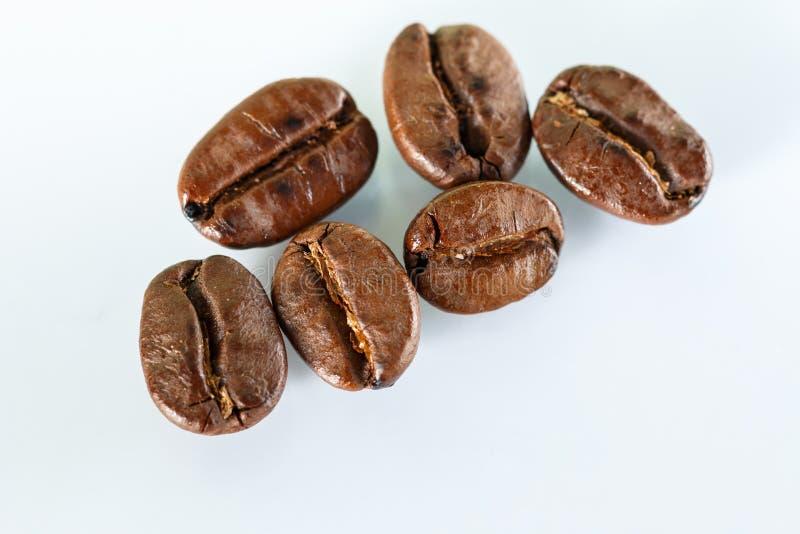 Sei chicchi di caffè fotografia stock