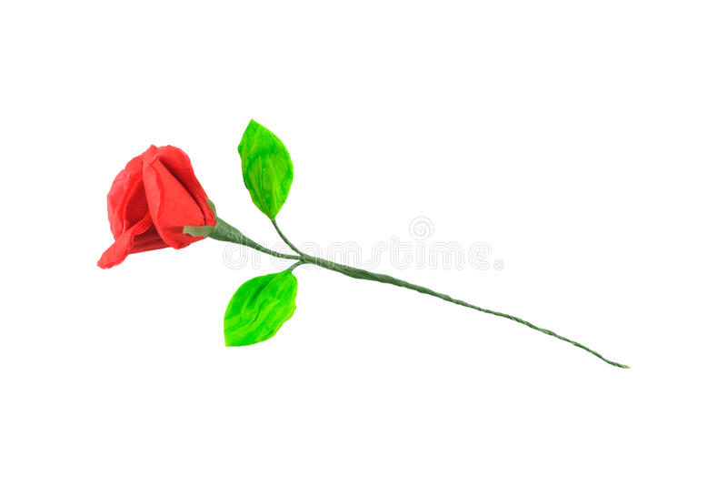 Seidenpapier Rose stockfotos