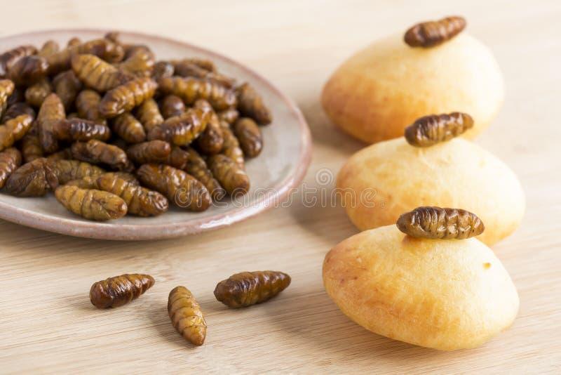 Seidenraupen-Puppeninsekten für das Essen als Nahrung Puppen-Seidenraupe mit dem gebackenen Brot selbst gemacht von gekochtem Ins stockfoto