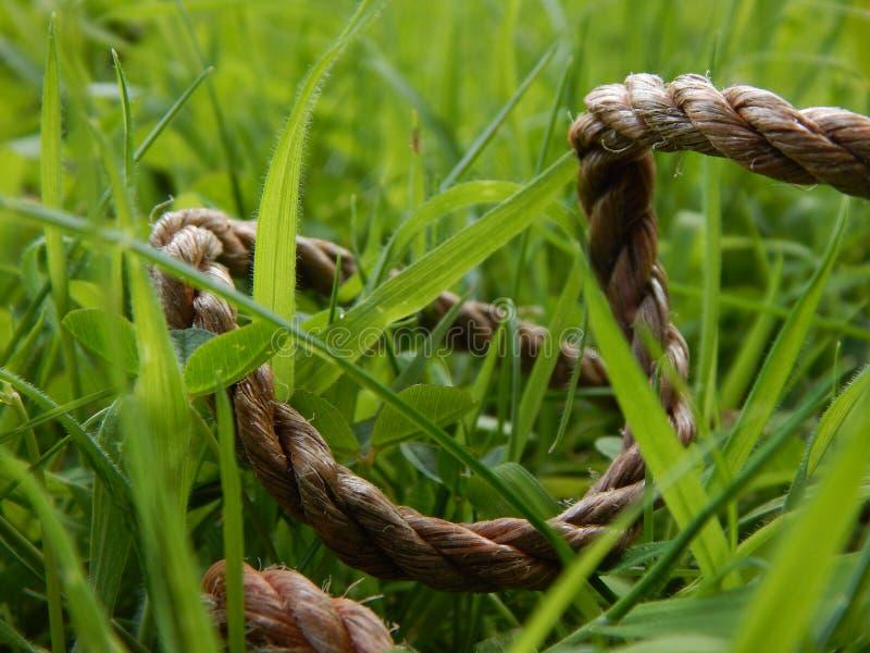Seil durch Gras lizenzfreies stockfoto