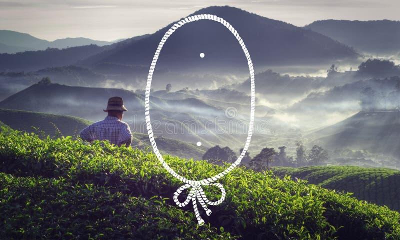 Seil-Rahmen-Landwirtschafts-Ernte-Tee-Ernte-Konzept stockbild