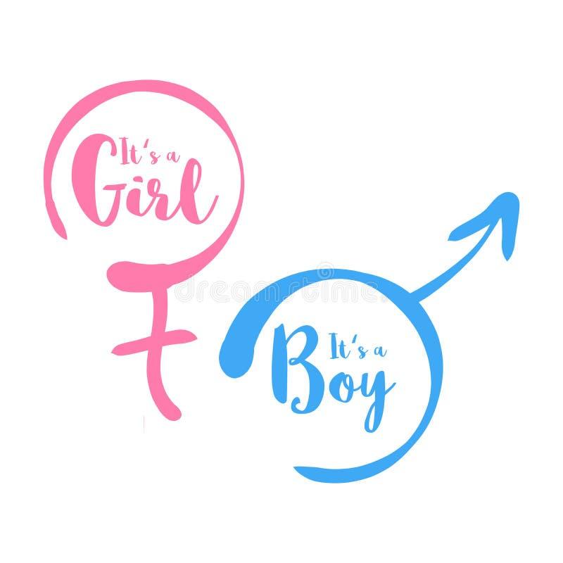Sein ein Junge oder ein Mädchen - Babypartyeinladungsschablone Kalligraphischer Text im von Hand gezeichneten weiblichen und männ stock abbildung