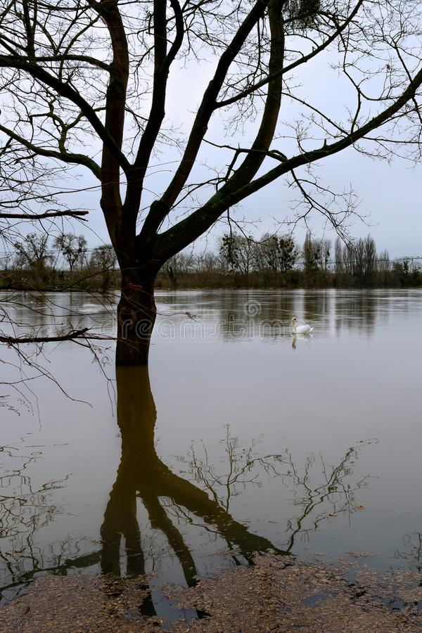 The Seine flooding in the Paris region stock image