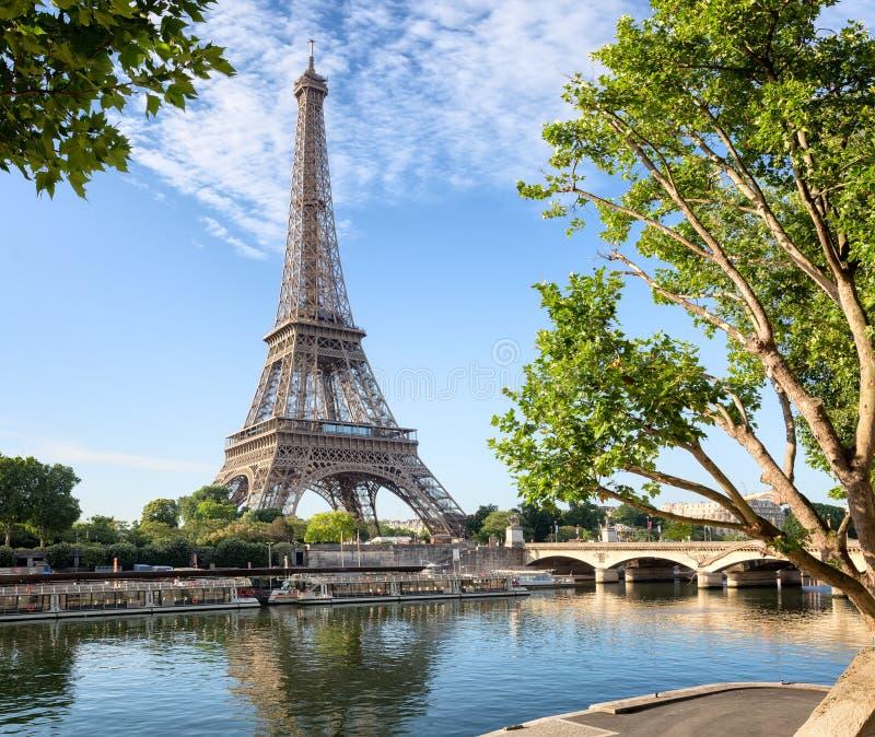 Seine i Paris med Eiffeltorn på soluppgång royaltyfria foton